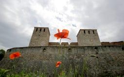 Baba Vida fortress Stock Photo