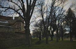 Baba Vida Fortress Vidin, Bulgarien arkivfoto