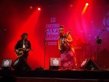 Baba Zula di concerto immagine stock libera da diritti