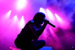 Babasonicos (zespół) muzyka na żywo przedstawienie przy Bime festiwalem Obrazy Royalty Free