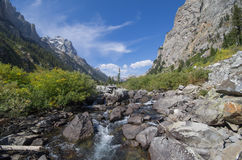 Babbling brook in Cascade Canyon. In Grand Teton National Park, Wyoming. Brush, flowers, rocks, and stream are at the bottom of the valley between tall mountain Royalty Free Stock Image