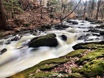 A babbling brook Stock Image