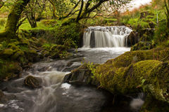 Babbling Brook Waterfall. During a trip through Ireland in April & May of 2015 I stumbled upon this pretty little waterfall. I hope you enjoy it Royalty Free Stock Image