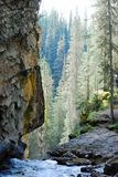 Babbling cascade water,rock walls,trees Rocky Mountains, Canada. A stunning landscape high up view taken in the Rocky Mountains of Canada of a babbling brook or royalty free stock photo