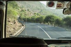 Babbuini sulla strada in Tanzania immagini stock