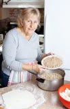 Babcia mięsny kulebiak Zdjęcie Stock