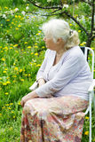 Babcia w ogródzie pod kwitnąć Zdjęcia Royalty Free