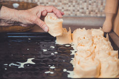 Babcia wypiekowy kulebiak Obraz Stock