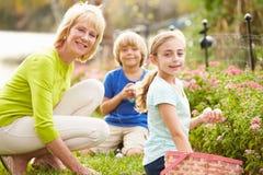 Babcia Z wnukami Na Wielkanocnego jajka polowaniu W ogródzie fotografia royalty free