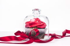 Babeczka z czerwonym lodowaceniem w przejrzystej olśniewającej szklanej prezent pokrywie dekorował z czerwonym faborkiem z łękiem zdjęcie royalty free
