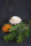 Babeczki i sosnowy śniadanio-lunch na drewnianym stole Fotografia Royalty Free