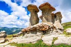 Babele, Bucegi Mountains, Romania Royalty Free Stock Image