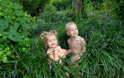Babes in the woods. Two small children pose in tall green grass and flowers.  Both are blond and smiling Royalty Free Stock Image
