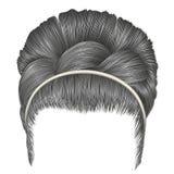 Babette dos cabelos com cores do cinza da trança forma na moda das mulheres Imagem de Stock Royalty Free