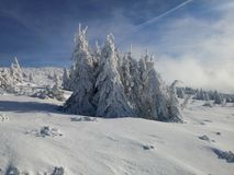 Babia hora. Beautiful winter nature in Slovak mountains royalty free stock photography