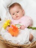 Babie's portrait Royalty Free Stock Photography