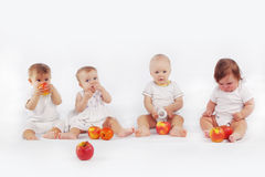 Babies. Group of babies with apples sitting on white studio background Royalty Free Stock Photography