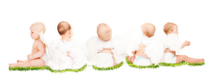 Babies Stock Photography