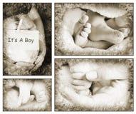 Babies Stock Photo