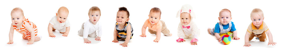 Babies crawling. Group of eight babies, crawling, over white Stock Images