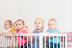 Babies in the crib Stock Photos