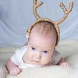 Babies with deer horns on bright background Stock Image