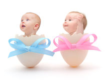Babies in eggs. On white background Royalty Free Stock Photography