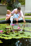 Babies explore Water Lilies. Family sit in dreamy background behind a pool filled with water lilies royalty free stock images