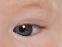 Babies eye Royalty Free Stock Images