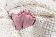 Babies foot taken closeup Stock Photography