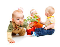 Babies group. A group of beautiful babies sitting, one is crawling Stock Photography
