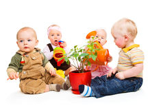 Babies group. Sitting around the potted plant Royalty Free Stock Images