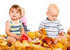 Babies group. Playing with leaves Royalty Free Stock Image