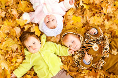 Babies on leaves Stock Images