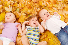 Babies lie on leaves. Three cute babies lie on yellow leaves Stock Photography