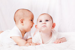 Babies talking, humor Stock Photo