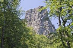 Babin zub - Stara planina, Serbia Stock Photos