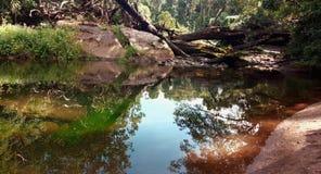 Babinda; Pöl för stenblock- eller jäkel` s med vattenreflexioner Arkivfoto