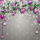 Babioles pourpres Grey Ornaments de brindilles vertes de sapin congelées par Noël Photos stock