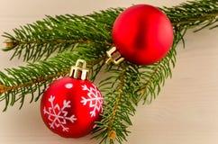 Babioles rouges de Noël et branche impeccable Images stock