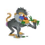 Baboon που τρώει το μπαμπού Στοκ Φωτογραφία