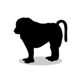 Baboon ape primate black silhouette animal. Vector Illustrator Stock Images