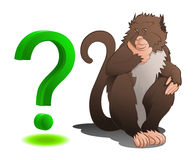 Baboon sitting with question mark Royalty Free Stock Photo