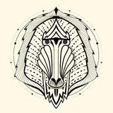 Baboon zentangle Royalty Free Stock Images