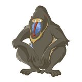 Babouin illustration stock