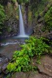 Baburay waterfall Stock Photography