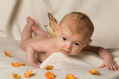 Baby. A new born baby with beautiful eyes Royalty Free Stock Image