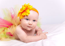 Baby. Portrait of the beautiful baby Royalty Free Stock Photo