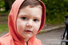 Baby. With a hood and  carriage Royalty Free Stock Image