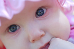 Baby. Stock Photography